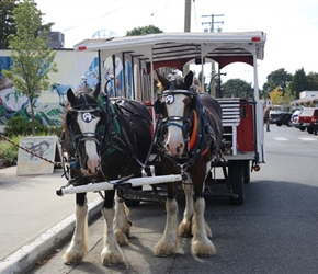 Fancy a carriage ride to see the Chemainus Murals