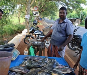 Roadside fish sellers