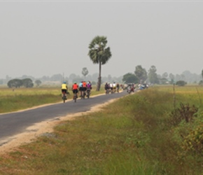 18.20.01.18-11-On-the-road-from-Passikudah27147.jpg