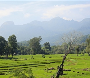 Across the mountains in central Sri Lanka