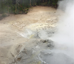 The Sulphur Caldron in Yellowstone National Park is one of the park's most acid hot springs, with yellow and turbulent waters reminding one of an evil witch's brew