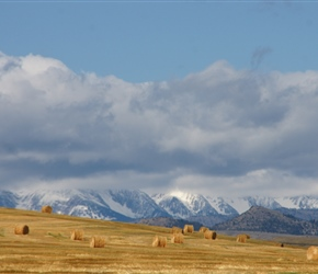 Ross Peak Range and round bales