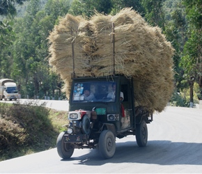Truck loaded with rice straw plods uphill