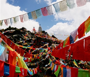 Prayer Flags, always colourful, always begging a picture