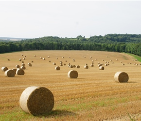 Round bales at Durnal