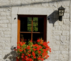 Window Box in Achene