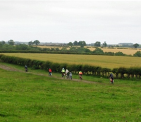 Through the lanes to Belford