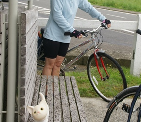 Emma spies a cat on the Ciney to Huy cyclepath