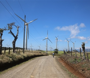 Windmills on track to Route 6