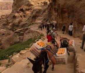 Delivering oranges to the Monestary. They seemed to know the way as they plodded up the path, faster than most tourists