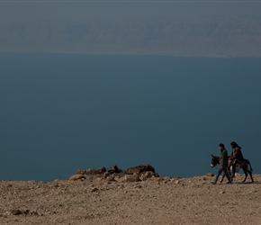 Donkey and the Dead Sea